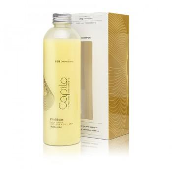 Интенсивный лечебный шампунь выпадение волос и жирность кожи Capilo Vitalikum sh.#04 250ml
