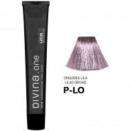 Краска для волос N.P-LO  Divina. one 60ml  Серебристый